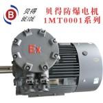 三相异步电机隔爆BT4高效节能 2P