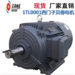 1TL0001三相异步电动机BM Y2卧式立式4极马达正品