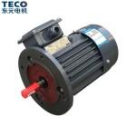TECO东元电机卧式刹车马达AEEVX3系列2极三相异步电机