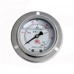 耐震带边嵌装压力表YN60/100TQ/150TQ